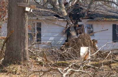 Storm Damage and Prevention, Milton GA